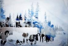 """Greenlandic sami meeting"""